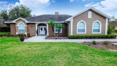Lakeland Single Family Home For Sale: 3147 Hawks Ridge Drive