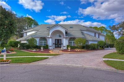 Valrico FL Single Family Home For Sale: $950,000