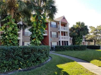 Hillsborough County, Pasco County, Pinellas County Rental For Rent: 10200 Gandy Boulevard N #209