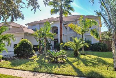 Valrico Single Family Home For Sale: 2708 Avon River Drive