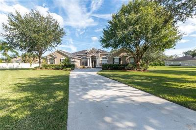 Brandon Single Family Home For Sale: 4302 Mahogany Wood Court
