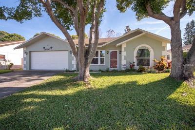 Port Richey Single Family Home For Sale: 8830 Aruba Lane