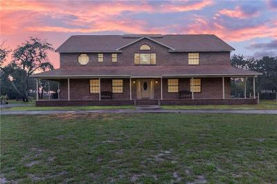 Mount Dora Single Family Home For Sale: 4407 Meadowland Drive