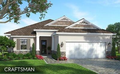 Apollo Beach Single Family Home For Sale: 7310 Hourglass Drive