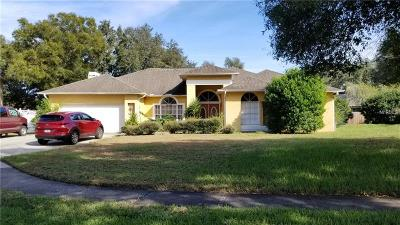 Valrico Single Family Home For Sale: 3506 Country Creek Lane