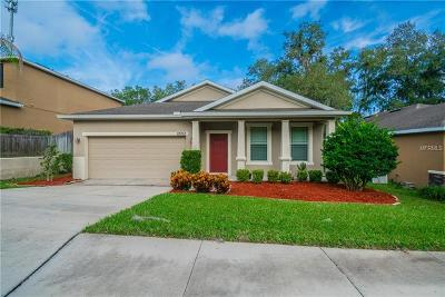 Riverview Single Family Home For Sale: 12212 McMullen Loop