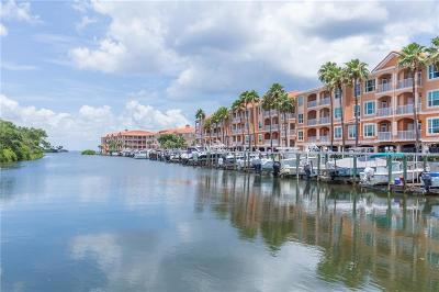 Tampa FL Condo For Sale: $159,997
