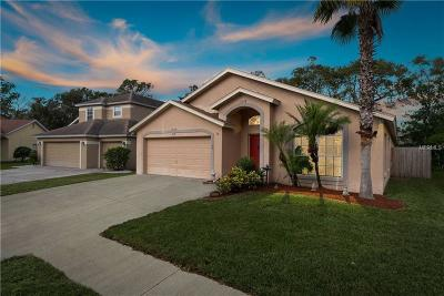 Tampa FL Single Family Home For Sale: $350,000
