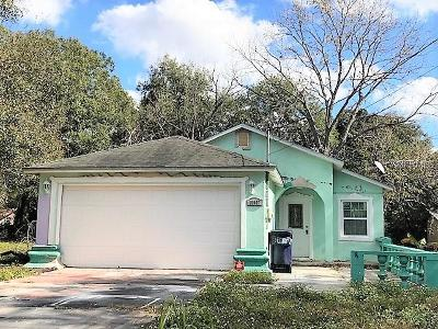 Hernando County, Hillsborough County, Pasco County, Pinellas County Single Family Home For Sale: 10007 N 11th Street