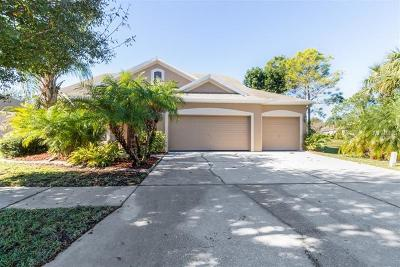 Hernando County, Hillsborough County, Pasco County, Pinellas County Single Family Home For Sale: 12905 Cattail Shore Lane