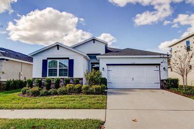Apollo Beach Single Family Home For Sale: 6320 Heirloom Place