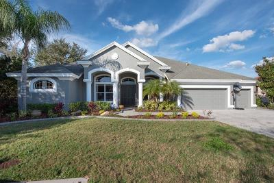 Tarpon Springs Single Family Home For Sale: 3171 St Martin Street