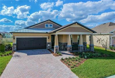 Wesley Chapel Single Family Home For Sale: 8266 Olive Brook Drive