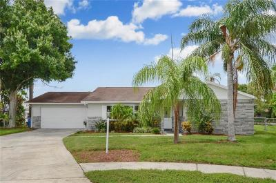 Tampa Single Family Home For Sale: 8726 Palisades Drive