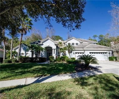 Tampa Single Family Home For Sale: 16344 Heathrow Drive