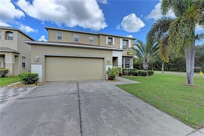 Ruskin Single Family Home For Sale: 432 Chimney Rock Drive