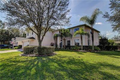Tampa Single Family Home For Sale: 16306 Doune Court
