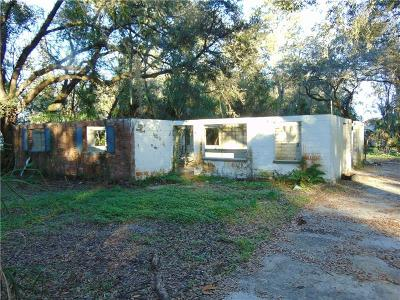 Tampa Single Family Home For Sale: 5515 N Falkenburg Road