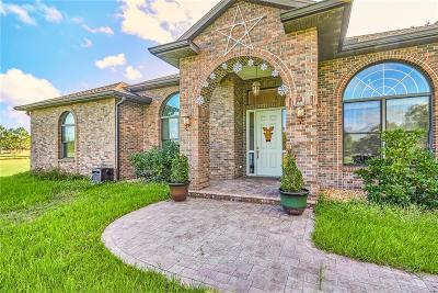 Dade City Single Family Home For Sale: 26302 Bayhead Road