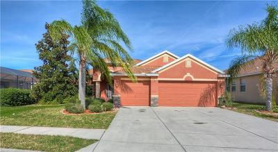 New Port Richey Single Family Home For Sale: 11207 Tayport Loop