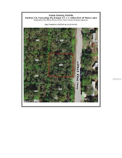 New Port Richey Residential Lots & Land For Sale: 10120 Shalimar Street