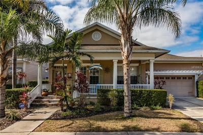 Apollo Beach Single Family Home For Sale: 420 Islebay Drive