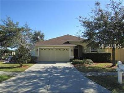 Wesley Chapel Single Family Home For Sale: 3842 Langdrum Drive