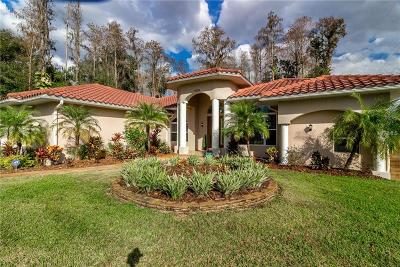 Lutz Single Family Home For Sale: 17209 Orangewood Drive
