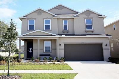 Riverview Single Family Home For Sale: 10515 Laguna Plains Drive
