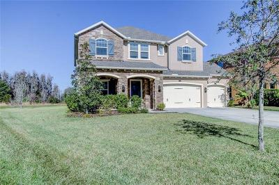 Wesley Chapel Single Family Home For Sale: 4193 Canino Court