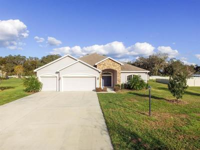 Plant City Single Family Home For Sale: 3324 Ranchdale Drive
