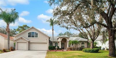 Valrico Single Family Home For Sale: 2514 Regal River Road