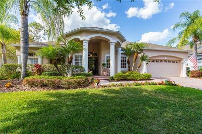Tampa Palms Single Family Home For Sale: 5030 Ashington Landing Drive