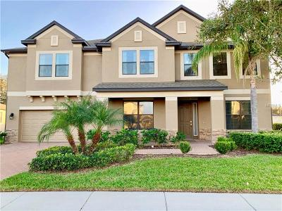Hillsborough County, Pasco County, Pinellas County Single Family Home For Sale: 13313 Sunset Shore Circle