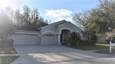 Wesley Chapel Single Family Home For Sale: 25804 Santos Way