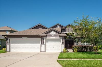 Wesley Chapel Single Family Home For Sale: 4630 Pointe O Woods Drive
