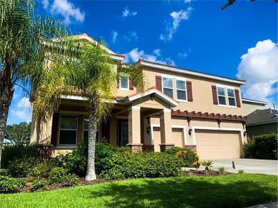 Hillsborough County, Pasco County, Pinellas County Single Family Home For Sale: 6619 Fairwater Drive