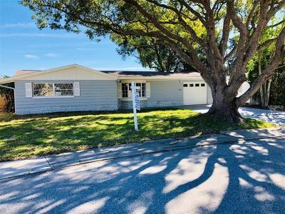 New Port Richey Single Family Home For Sale: 4328 Newbury Drive