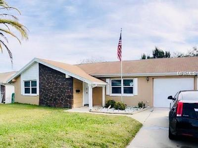 Hillsborough County, Pasco County, Pinellas County Single Family Home For Sale: 12304 Partridge Hill Row