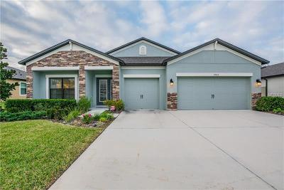 Spring Hill Single Family Home For Sale: 19012 Diego Circle