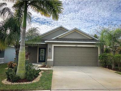 Hillsborough County Single Family Home For Sale: 1125 Seminole Sky Drive