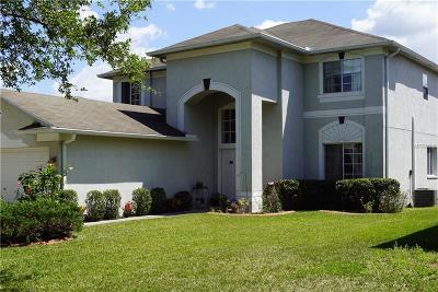 Valrico Single Family Home For Sale: 2825 Pankaw Lane