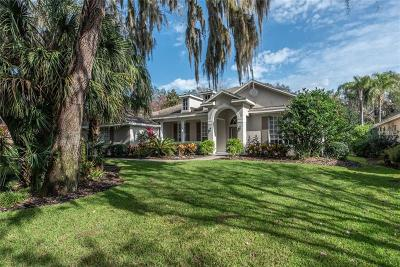 Lithia Single Family Home For Sale: 6128 Kestrelridge Drive
