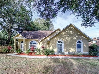 Valrico Single Family Home For Sale: 2219 Glen Mist Drive
