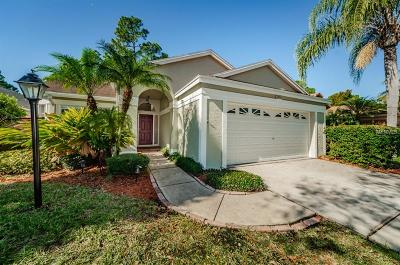 Tampa Single Family Home For Sale: 10406 Springrose Drive