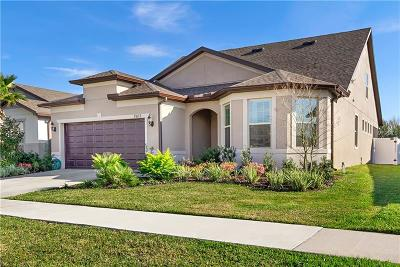 Riverview Single Family Home For Sale: 11617 Kilkenny Coral Drive