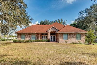 Lutz Single Family Home For Sale: 17119 Hanna Road