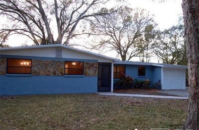 Tampa Single Family Home For Sale: 501 Maydell Drive