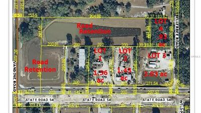 Commercial For Sale: 30115 State Road 54