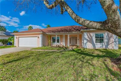 Tampa Single Family Home For Sale: 9226 Pebble Creek Drive